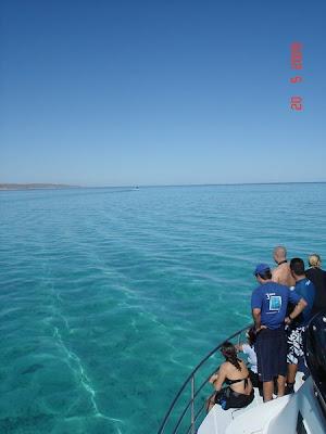 Snorkelling Ningaloo Reef Western Australia