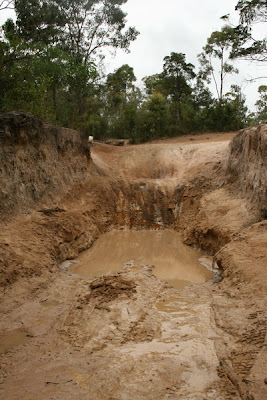 Old Telegraph Track - Gunshot Creek