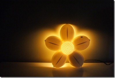 flower light 1