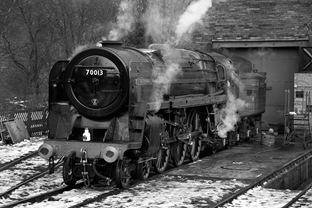 70013OnShed2_BW