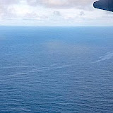 In this photo released by Brazil's Defense Ministry, an aerial view of an oil slick on the sea near Brazil, Wednesday, June 3, 2009.  A 23-foot (seven-meter) chunk of plane and a 12-mile-long (20-kilometer-long) oil slick supposedly from  Air France flight 447 were found early Wednesday, Brazilian air force spokesman Col. Jorge Amaral said.  Rescuers have still found no signs of life. The new debris was discovered about 90 kilometers (55 miles) south where searchers a day earlier found an airplane seat, a fuel slick, an orange life-vest and pieces of white debris aldgedly . (AP Photo/Brazil Defense Ministry)