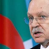 Bouteflika: Le programme des énergies renouvelables favorise linvestissement et la création demplois