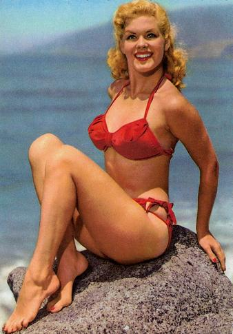classic bikini smallest bikini contest vintage bikini pic