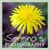Sereina's Photography