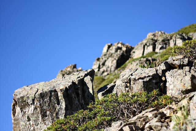 山頂的岩石.JPG