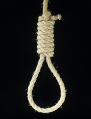 noose