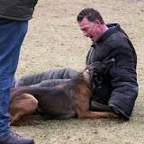 diensthonden oefendag