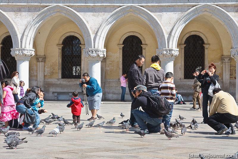 http://lh6.ggpht.com/_p9j-6xLawcI/S9jVJEERedI/AAAAAAAATPw/Qg4Al2FN5gQ/s800/20100411-123833_Venice.jpg