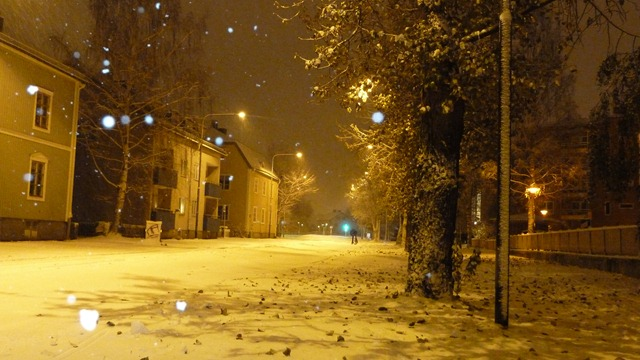 2010-10-23 Umea First Snow 009
