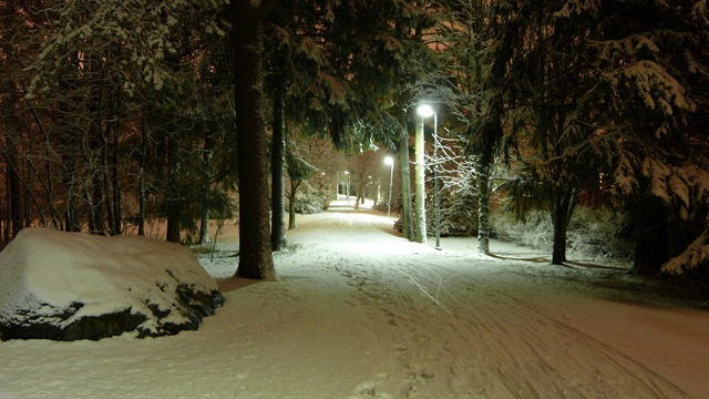 2010-10-23 Umea First Snow 041