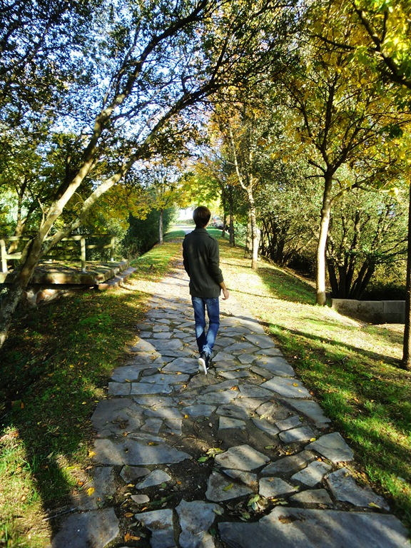 Lagares otoño 027