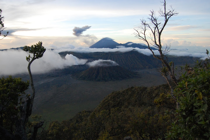 Bromo View