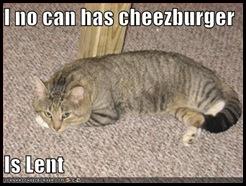lent-cat