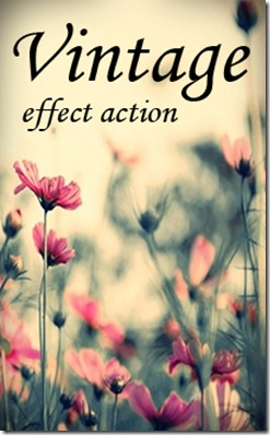 Vintage_Effect_Action_by_Irridian