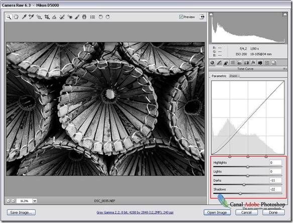 Converter imagem em preto e branco no camera raw 00002
