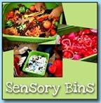 Sensory-Bins6