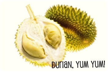 Tropical fruit - Durian