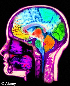 The moral compass, technically named the right temporo-parietal junction, lies just behind the right ear in the brain. Alamy