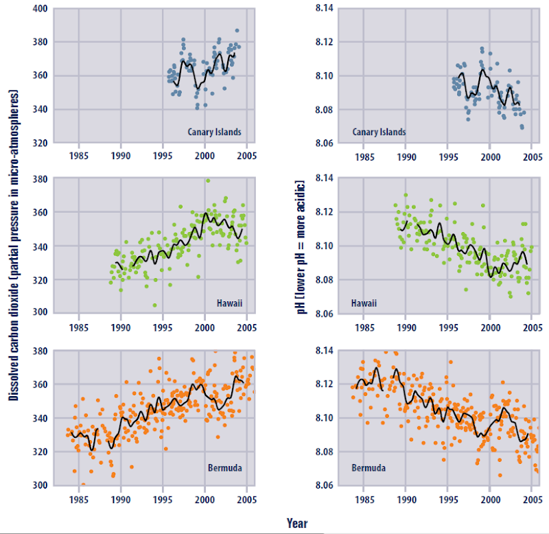 Ocean Carbon Dioxide Levels and Acidity, 1983–2005. EPA / Climate Change Indicators in the United States