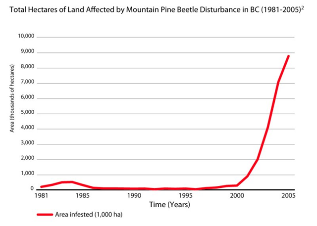 Total Hectares of Land Affected by Mountain Pine Beetle Disturbance in BC, 1981-2005. shim.bc.ca