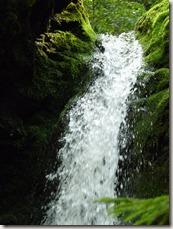 P1010144 parc national de Fundy balade aux chutes Dickson