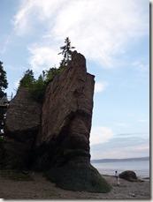 P1010193 hopewell rocks