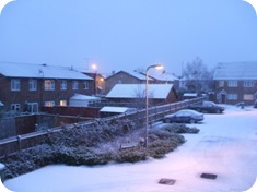 Blue snow[3]