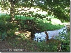 Loch Monzievaird (35)