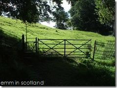 Loch Monzievaird (39)
