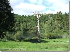 Loch Monzievaird (50)