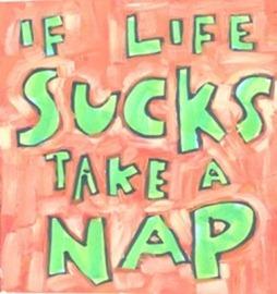 lg_if_life_sucks_take_a_nap