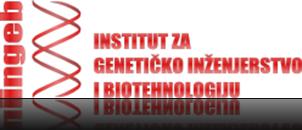 ingeb-logo