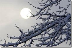 capt_d1557502e17b42fd88d94237a99552c1_winter_weather_mdab102