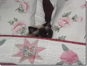 Made Bed Around