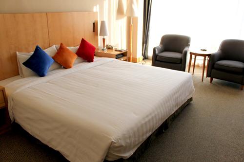 صور فندق نوفوتيل