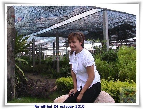 photo retailthai