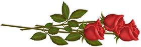 3_long_stem_roses-750179