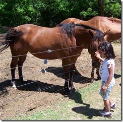 izabel and horses