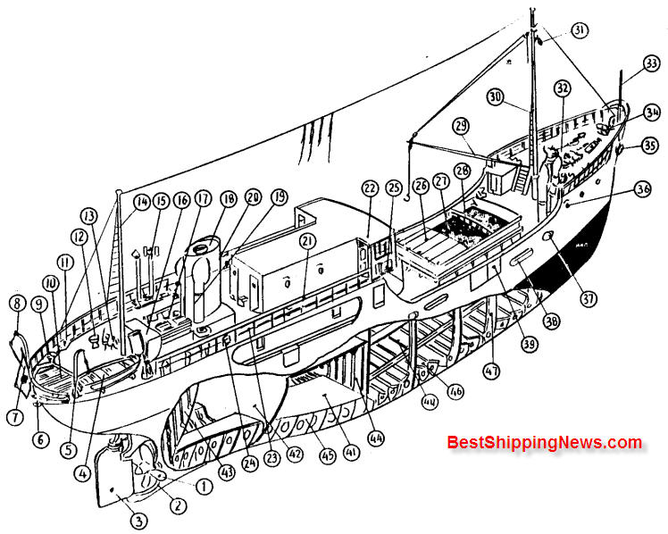 Coasting cargo %26 passenger ship types of ships archives page 2 of 4 shipbuilding picture dictionary