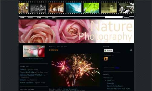 Nature Photography Template