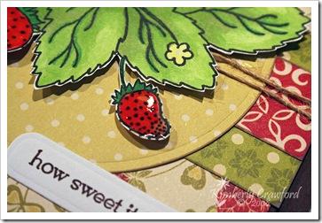 SRStrawberriesCUBerry