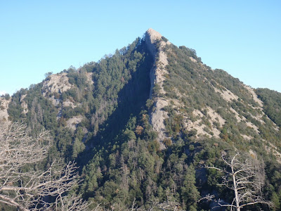 Cresta oest del Salgaguda
