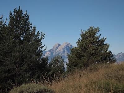 Panoràmica cap al Pedraforca