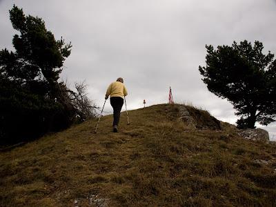 Arribant al cim