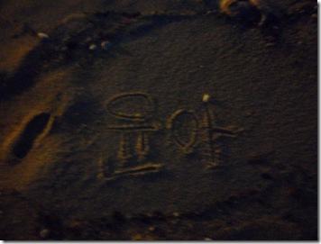 SAM_6400