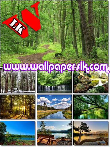wallpapers for pc in hd. hd wallpaper pc. hd wallpaper