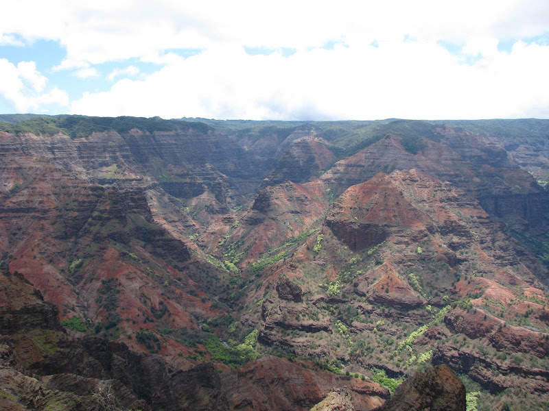 A view into Waimea Canyon