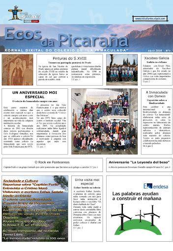 Ecos da Picaraña nº 3. Abril de 2010