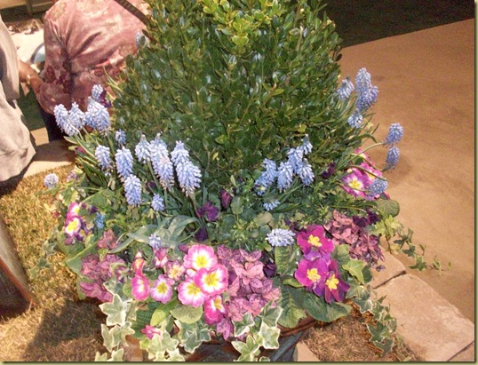 Flower show & Kane County 050