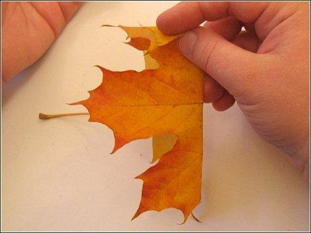 http://lh6.ggpht.com/_q6EEIoA3F3c/SpGIaA3knwI/AAAAAAAAABg/O3BQfiiPRBI/s512/art-origami-rose-from-mapple-leaf-02.jpg